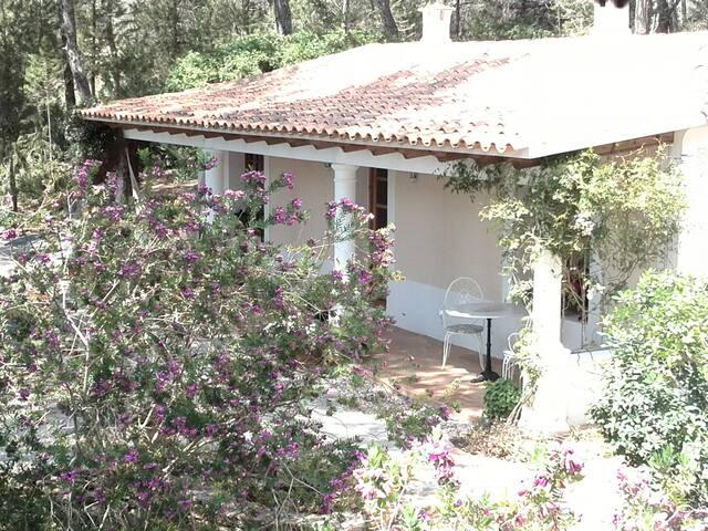 Attractive Guest House in Ibiza - Sant Miquel de Balansat - Dům