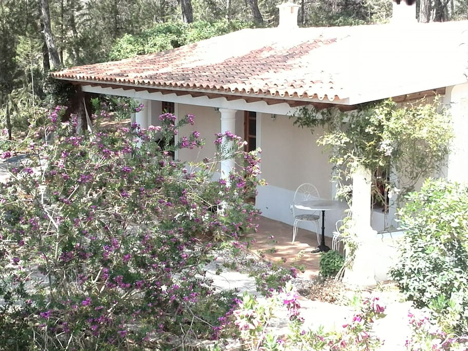 Attractive Guest House in Ibiza - Houses for Rent in Sant Miquel de Balansat, Balearic Islands ...