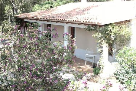 Attractive Guest House in Ibiza - Sant Miquel de Balansat - Rumah