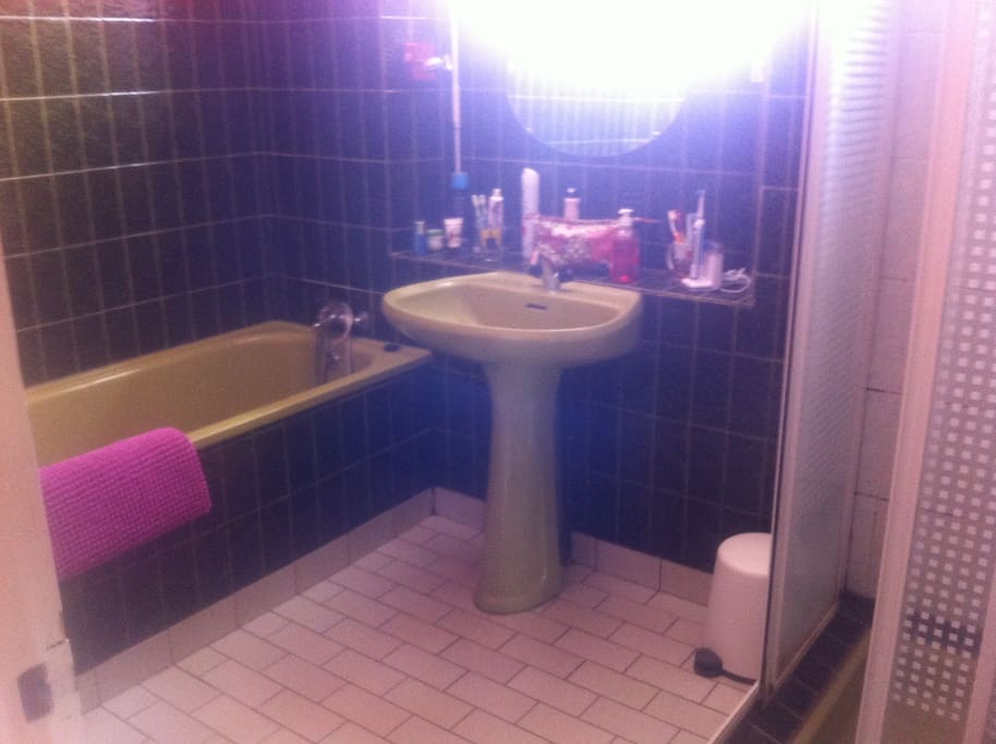 Salle de bain / Douche