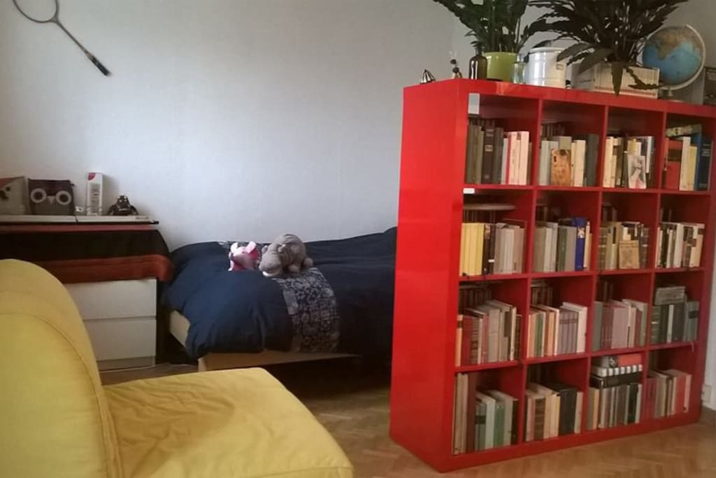 Night area. Bed with wild beasts, the chair-bed, my dear books and plants...