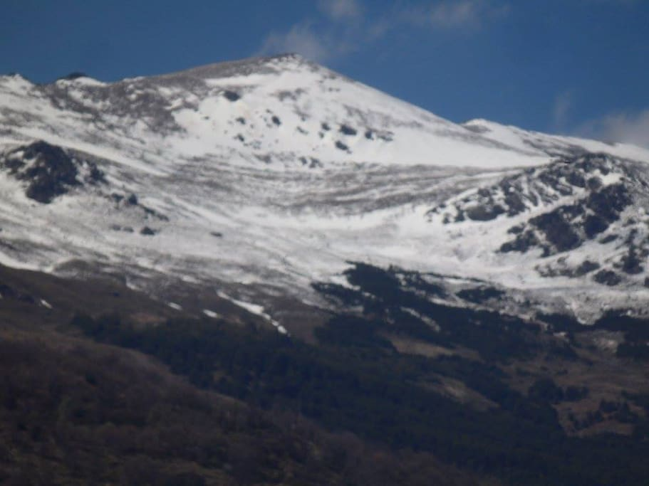 This view from the garden -Mulhacen, a peak of the Alpujarras