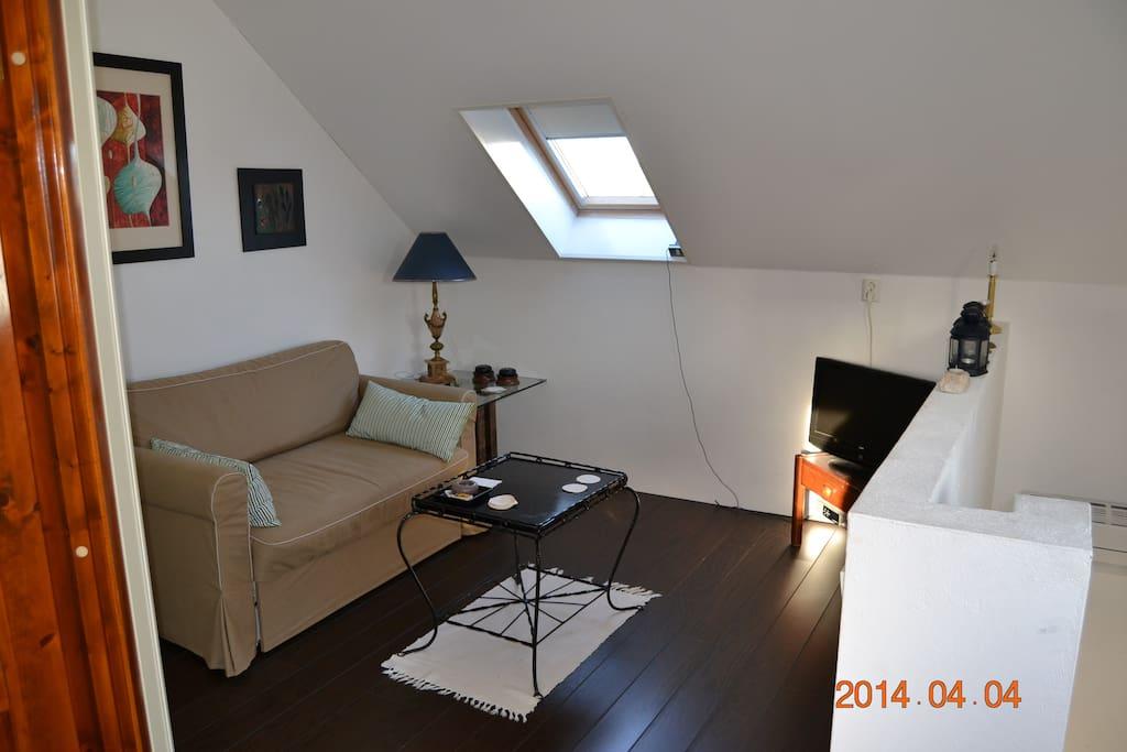 2.etg stue med sovesofa og TV