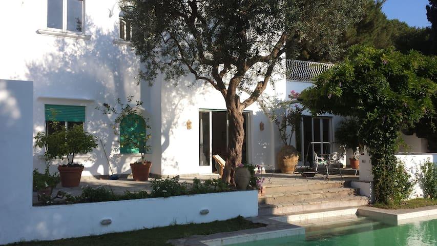 il terrazzo davanti la casa
