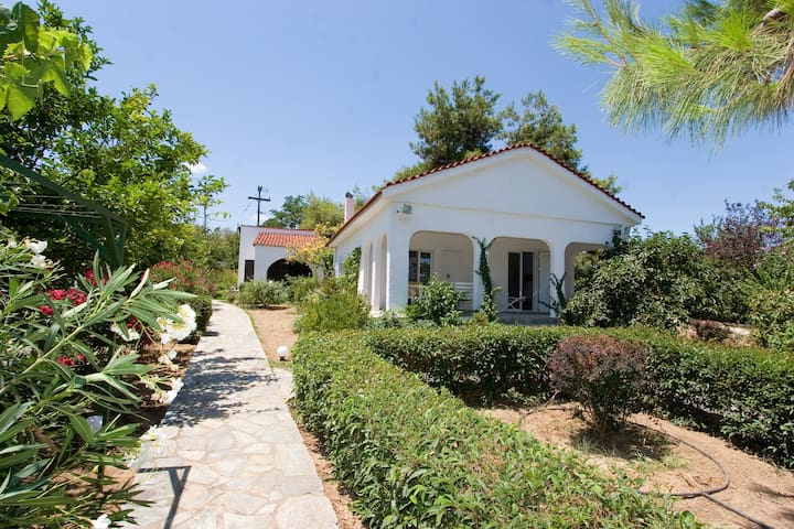 2,5 acres by the beach in Evia - Aidipsos