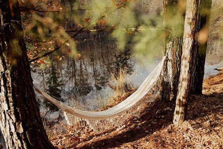 Hammock overlooking the water. Beautiful place to relax and read a book while listening to the birds and watching the ducks and blue heron fly across the lake.