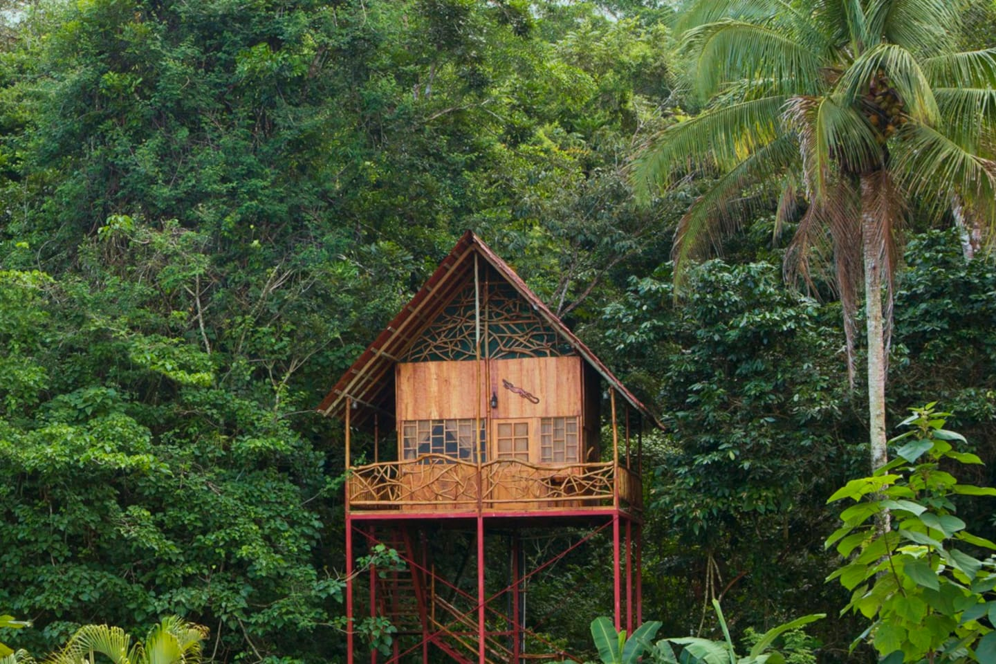 rainforest tree house w springs treehouses for rent in