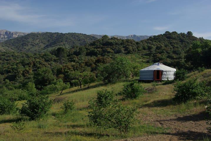 Yurta autentica frente al Montsant