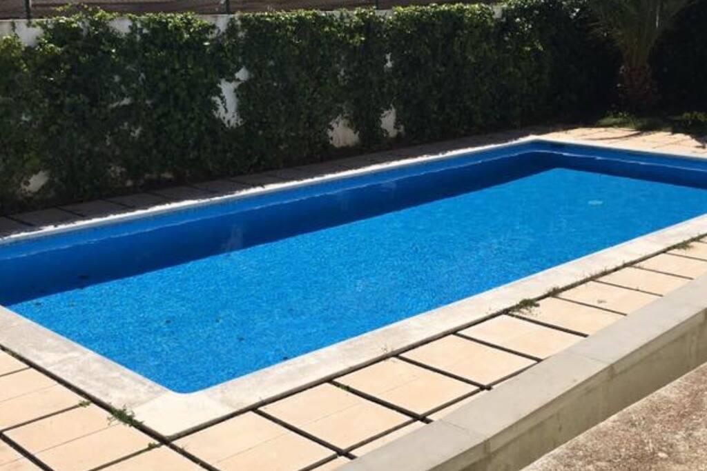 common swimmingpool
