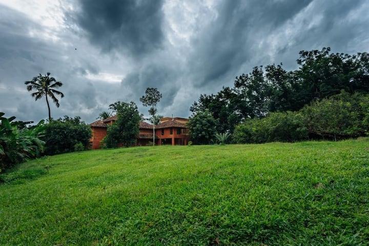 Room 3 @ Mynaakom - real Kerala countryside!