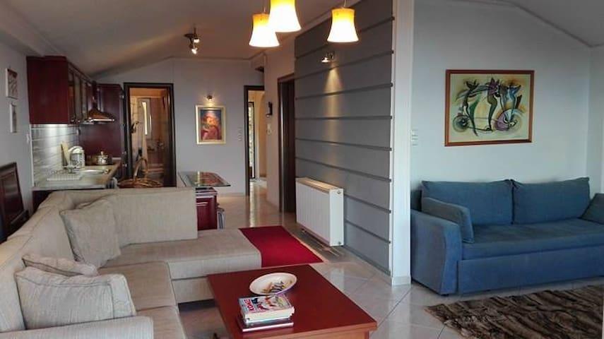 PANTELEIMON BEACH FRONT HOLIDAY APARTMENT - Paralia Panteleimonos - Appartement