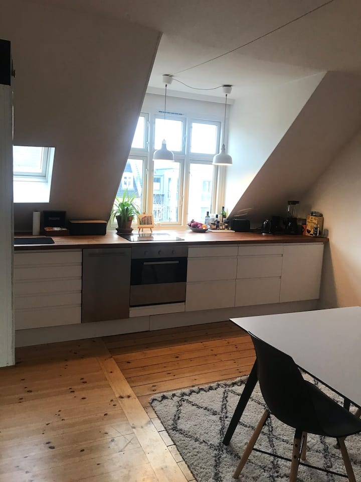Cozy apartment in the heart of Frederiksberg