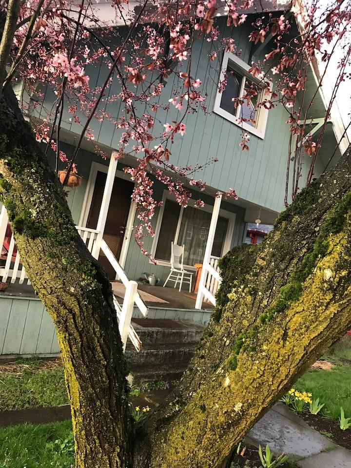 Funky, urban farmhouse, clean room in SE Portland