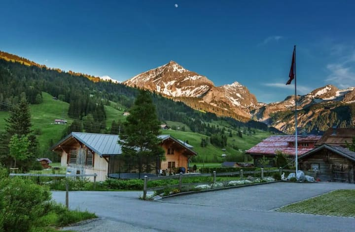 Fantastic Cozy Chalet Right next to Famous Gstaad