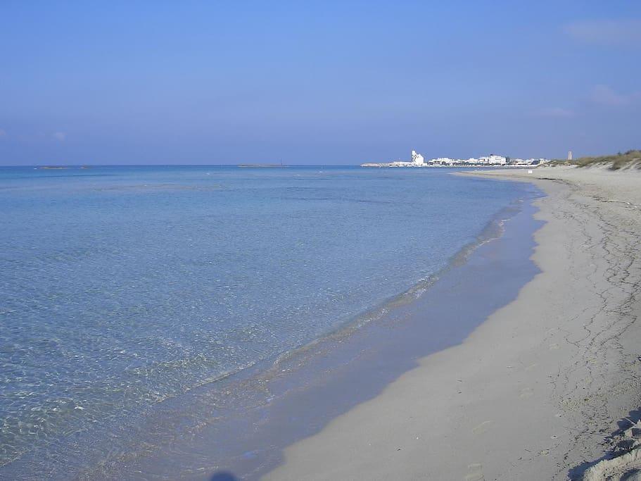 La vicina spiaggia di Torre San Giovanni