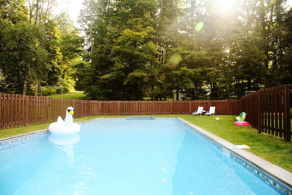 large swimming pool 20x50 with lounge deck