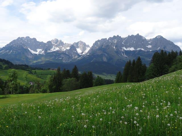 Bio-Bauernhof Holzerhof
