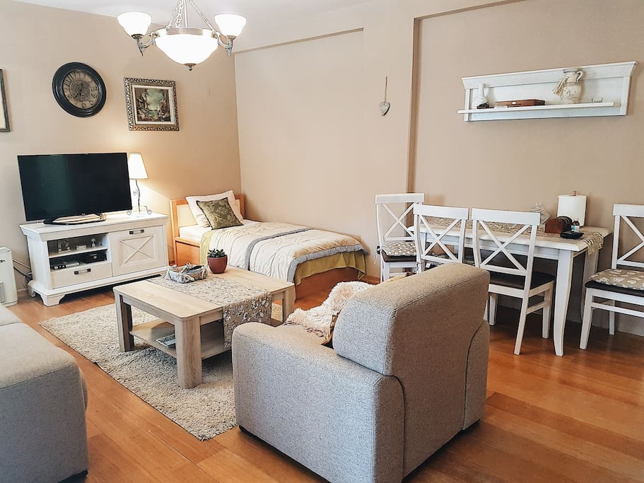 Living Room in One Bedroom Apartment located few minutes of walk from the Beach and Old Town