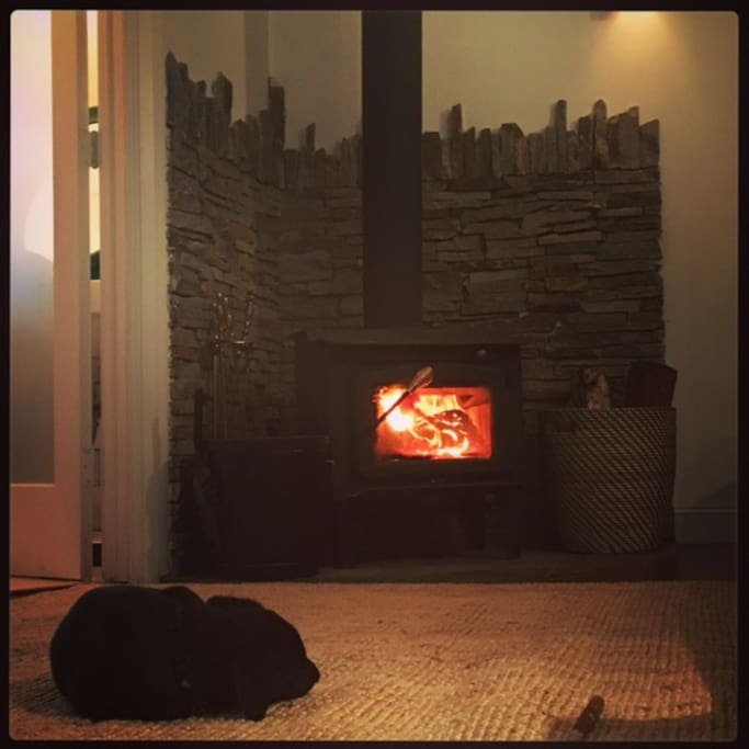 Relaxing by the fireplace...warm and lovely.