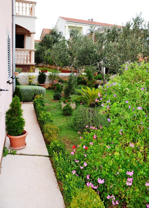 Private green garden by the terrace