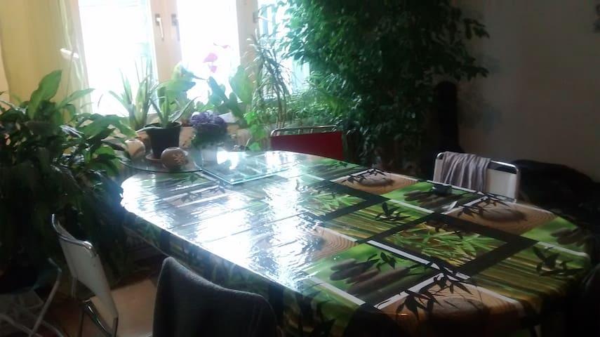 ch dans appaartement av jardin, prèt transport - Schiltigheim - Apartamento