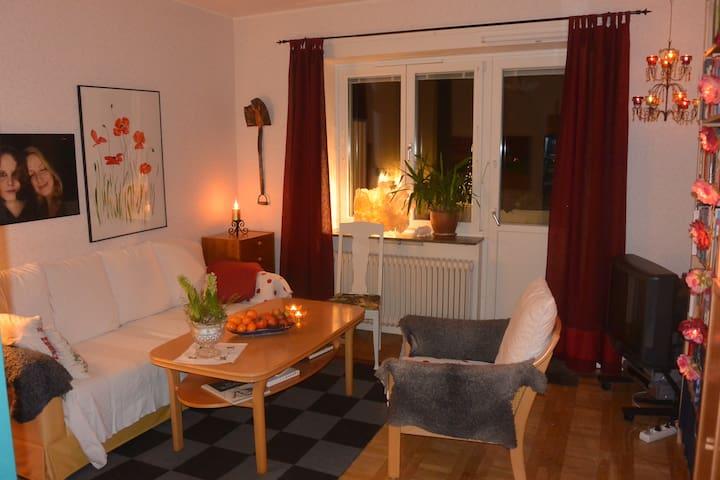 Nice apartment near WSC events - Falun - Apartamento