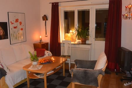 Nice apartment near WSC events - Falun