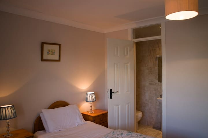 Twin bed B&B bedroom - Ballybrittas - Bed & Breakfast