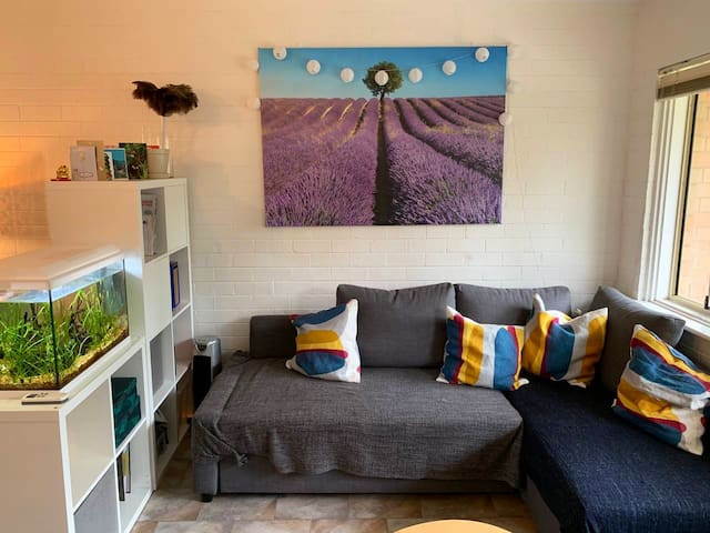 Cozy apartment (with 3 rooms) - right next to UWA