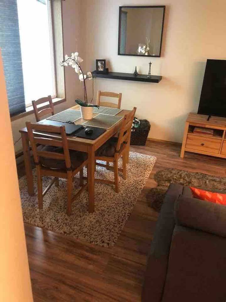 Condo in Kirkland /20 mins from SEATTLE