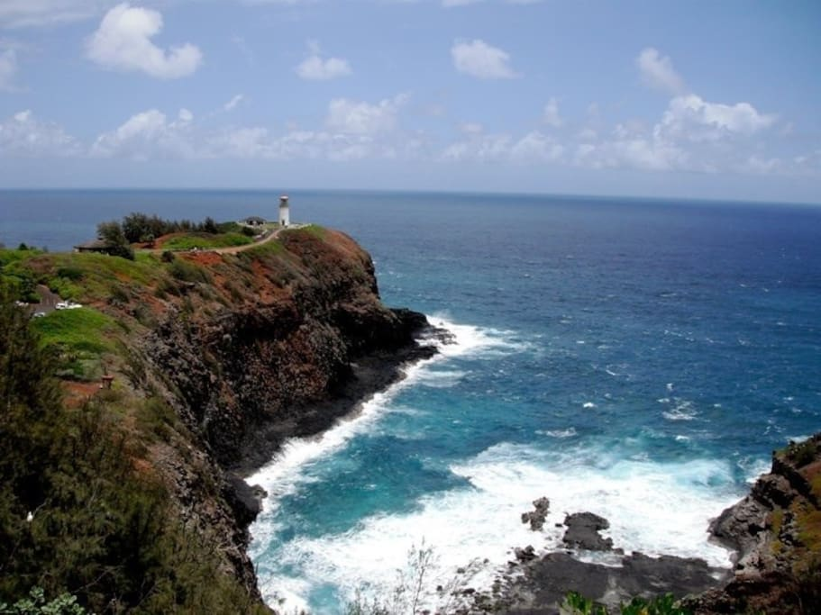 Kilauea Lighthouse is only 20 minutes away