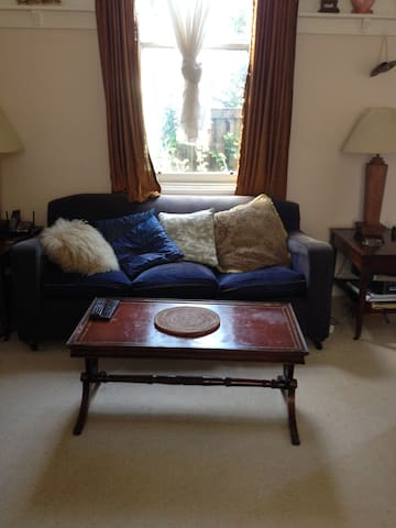 Living room. Old style comfort.