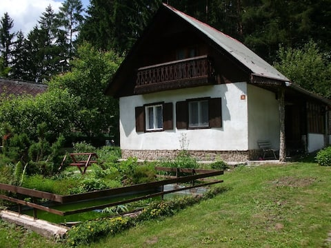 Odpočinková chata u lesa
