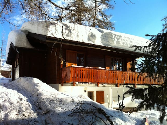 Lovely chalet in sunny Bellwald - Bellwald - Rumah