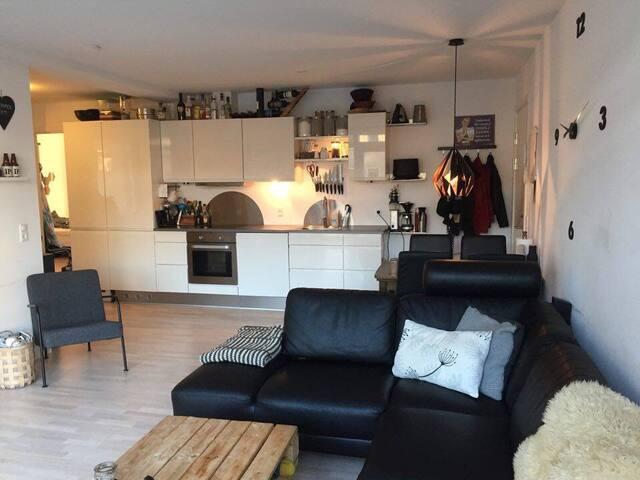 Hjemlig lejlighed i Aarhus - Aarhus - Lägenhet