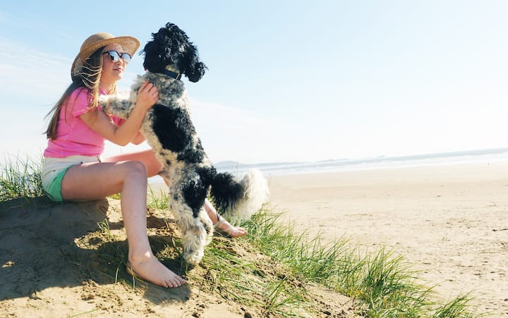 Neptune, dog-friendly beachfront holiday cottage