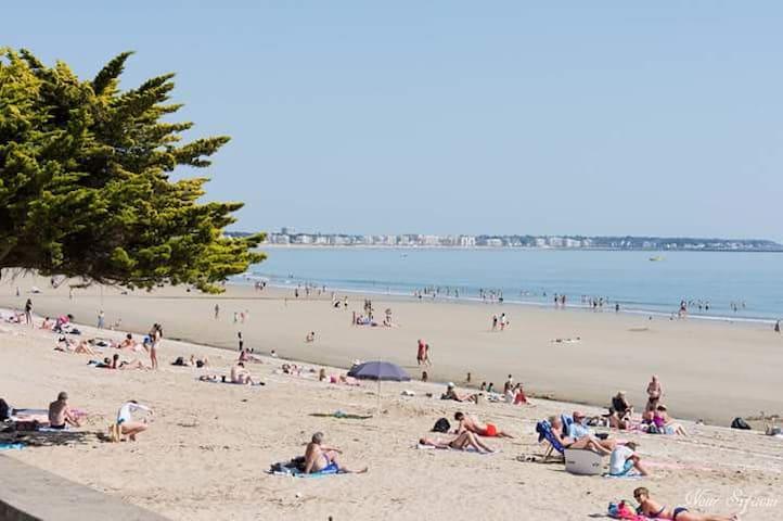 La plage fait 15 km de long. Classée dans les résultats des plus belles baies du monde