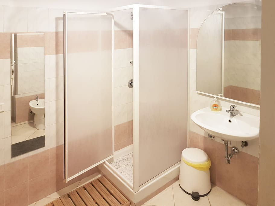 Spacious bathroom with large shower and hairdryer