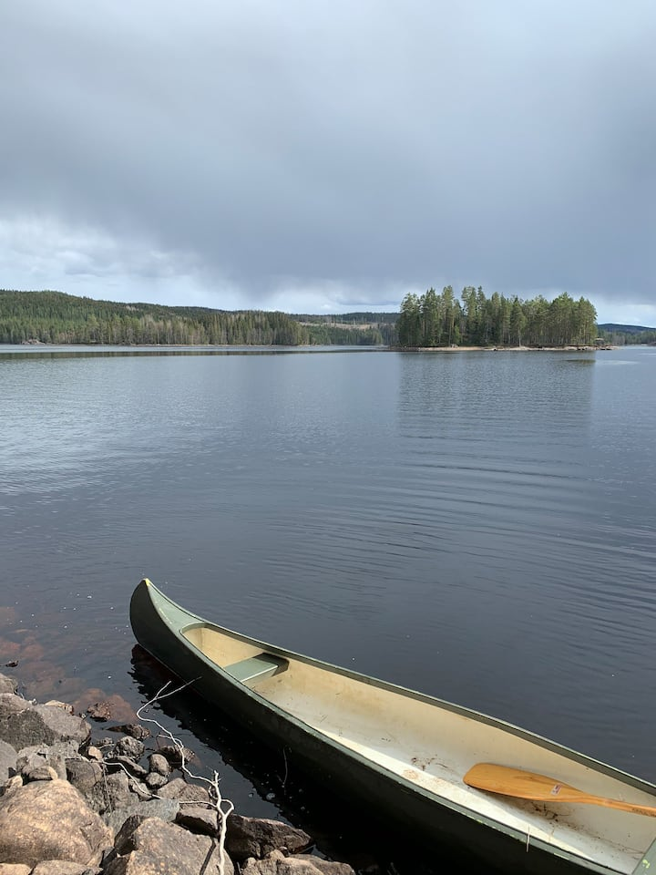 Tretopptelt på privat holme på Finnskogen