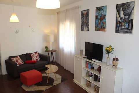 MUSEU Cozy Apartment