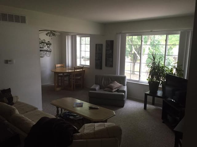 Downtown Rochester apartment near park. - Rochester - Daire