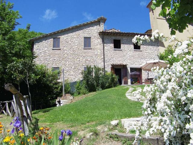 Apartment B&B hillside in Umbria - Città di Castello - Lägenhet