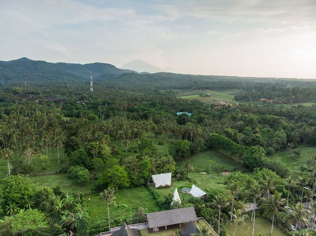 Feel as if you are staying in vast nature sanctuary