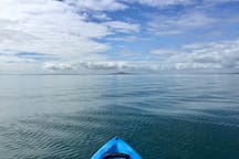 Explore the area by Kayak