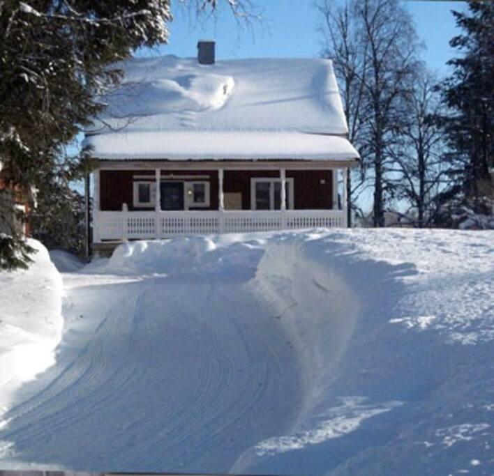 Winterpicture / Winterbild