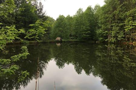 *The Yew Mountain Center - Campsite