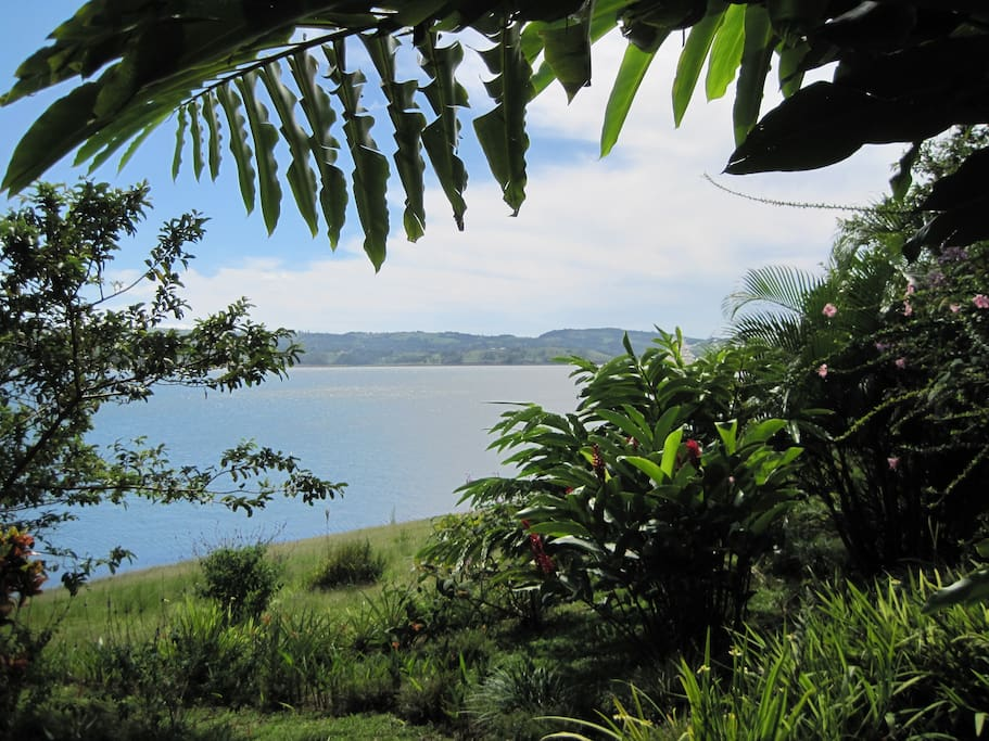 View Lake Arenal from one of several terraces