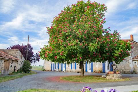 Gîte LES BOUGRINES - Marais Poitevin, Sud Vendée