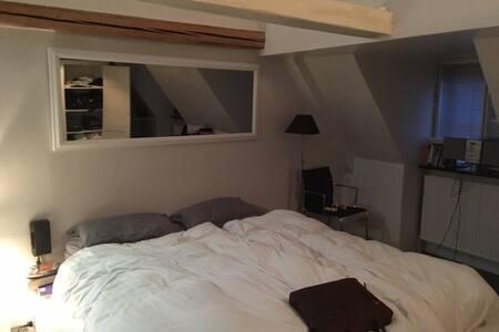 Beautiful apartment in central Copenhagen - 哥本哈根