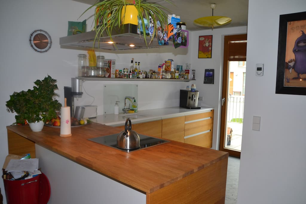 new and modern kitchen